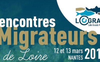 Rencontre Migrateurs de Loire 2019: du 12 au 13 mars
